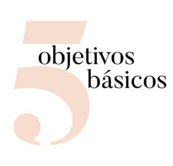 5 objetivos básicos